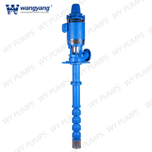 Axial Flow Vertical Turbine Pump with Hollow Shaft Motor